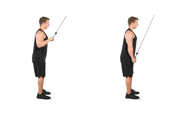 cable-bar_pushdown.jpg