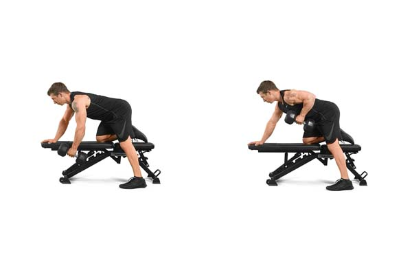 single-arm_bench-assisted_dumbbell_row.jpg