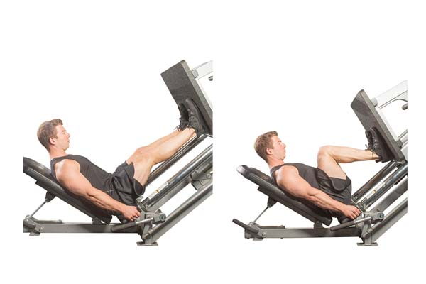 seated_machine_leg_press.jpg