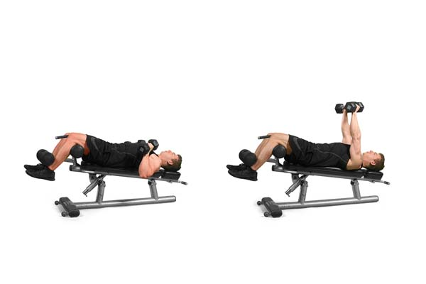 Dumbbell Chest Exercises Daily Spot