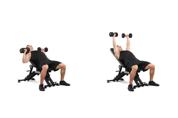 incline_dumbbell_bench_press.jpg